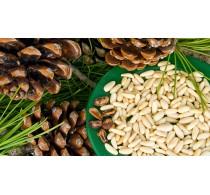 Кедровый орех (100 гр.)