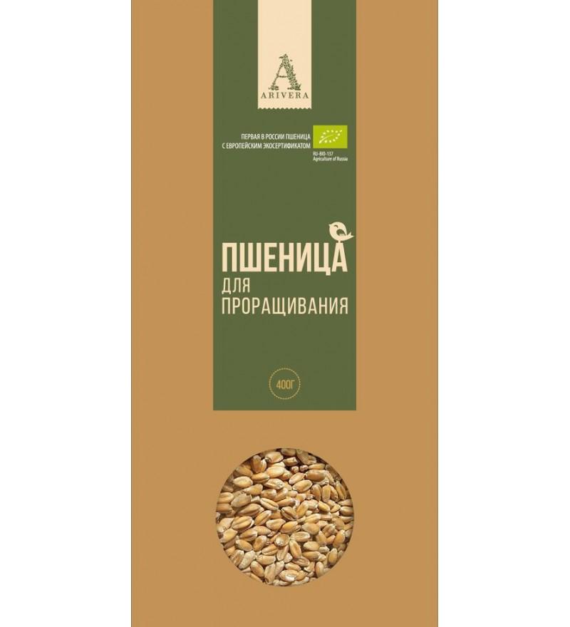 Био пшеница для проращивания «Аривера»